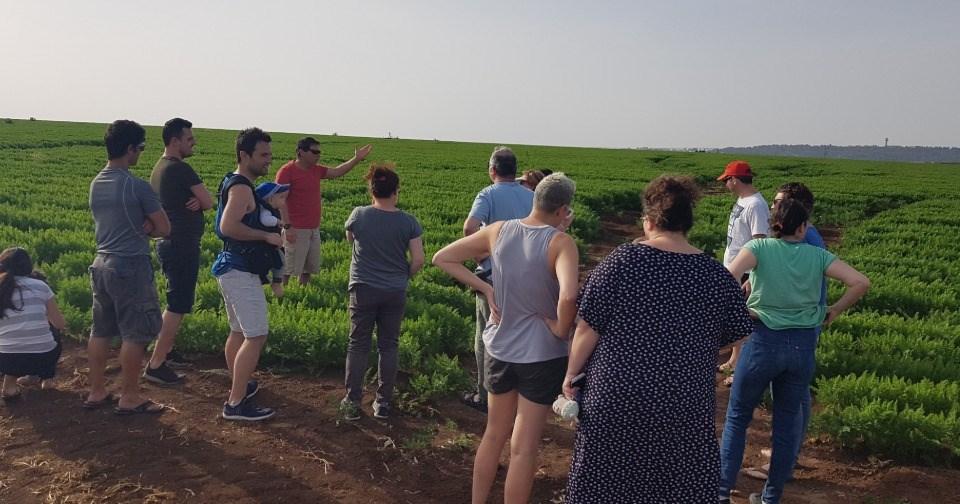 Agricultural Tour in Kibbutz Mizra
