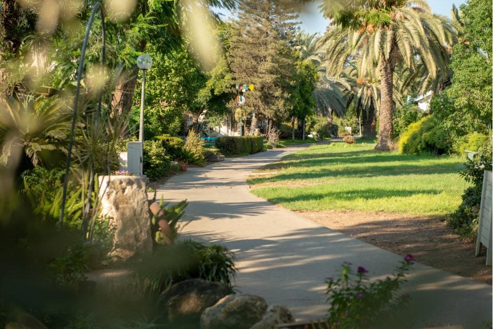 Experience - Kibbutz Mizra