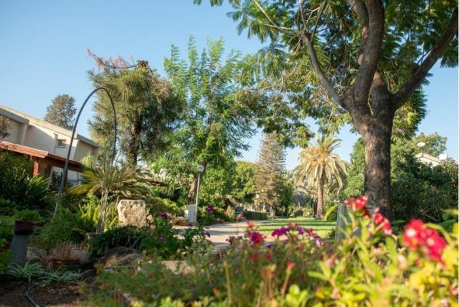 Experience The Kibbutz