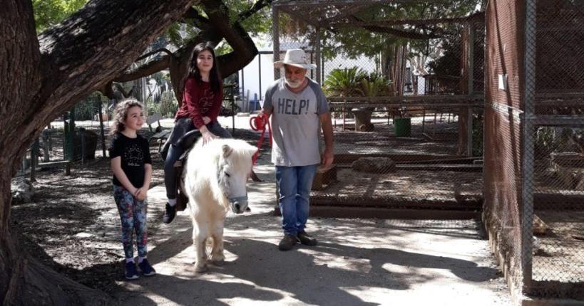 Petting Zoo - Kibbutz Mizra